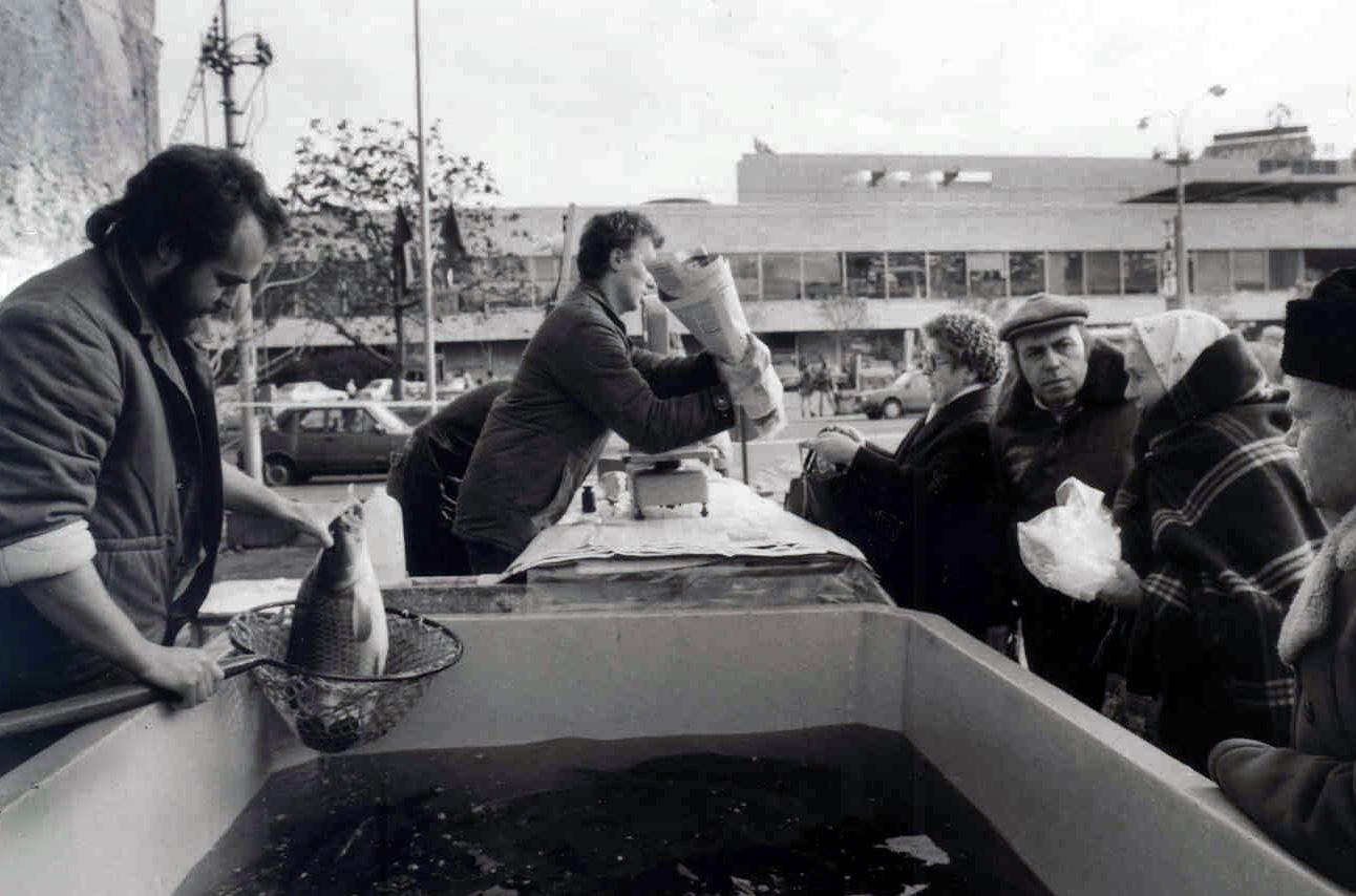Od 20. decembra 1989 do Štedrého dňa budú pracovníci rybárstva predávať vianočné kapry v ambulantných predajniach. Na archívnej snímke predaj vianočných kaprov  v centre Starého mesta,  oproti obchodnému domu Prior.