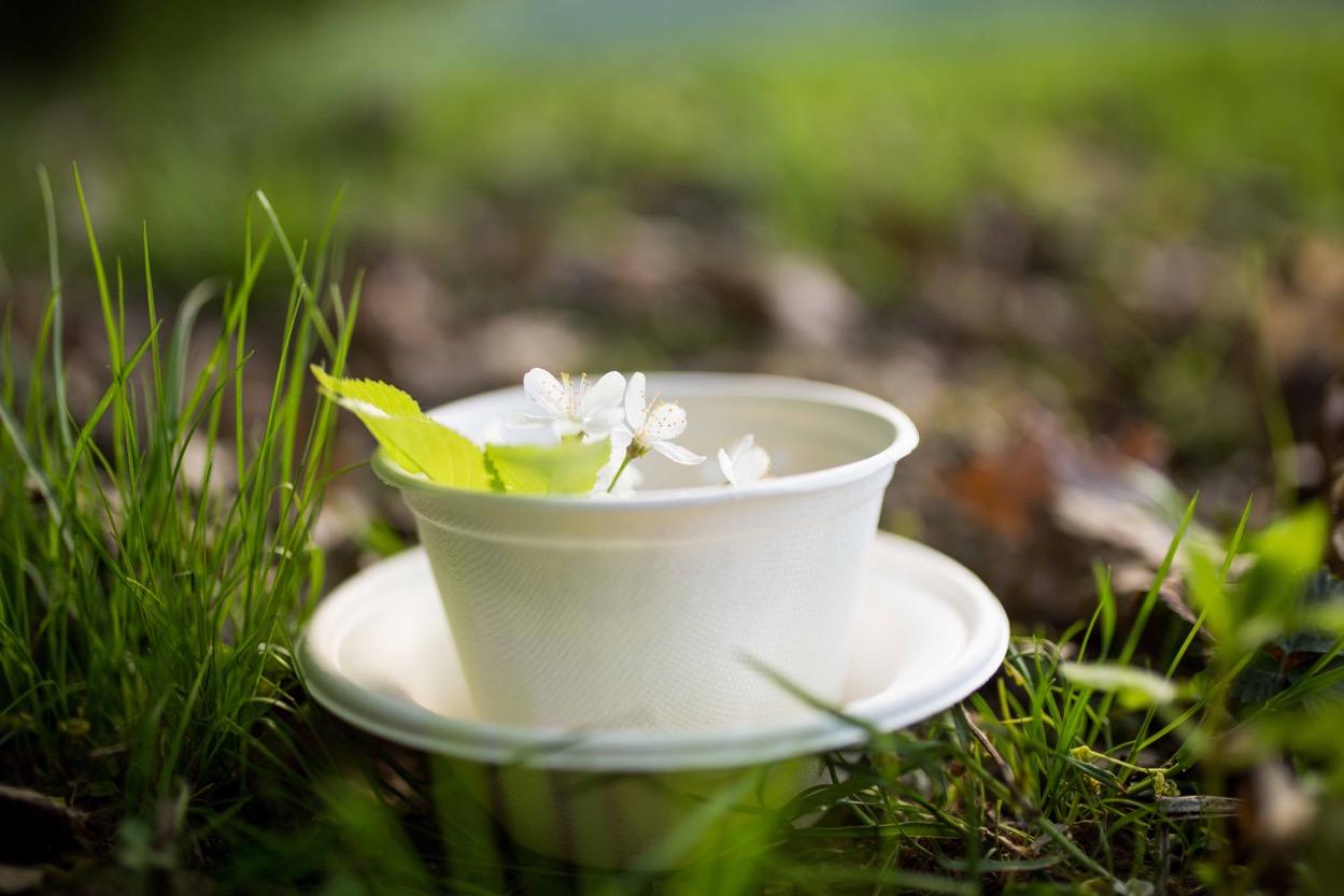 V stánkoch by vám mohli naservírovať jedlo aj v takomto eko-riade.